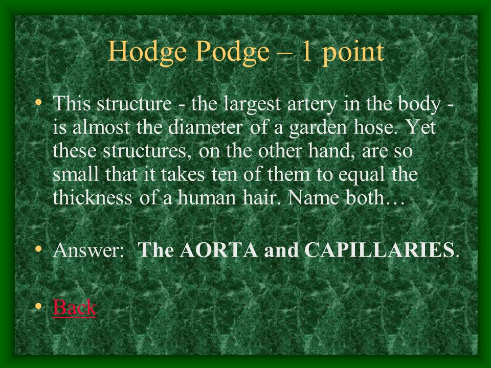Hodge Podge – 2 points lub-DUB, lub-DUB, lub-DUB.Sound familiar.