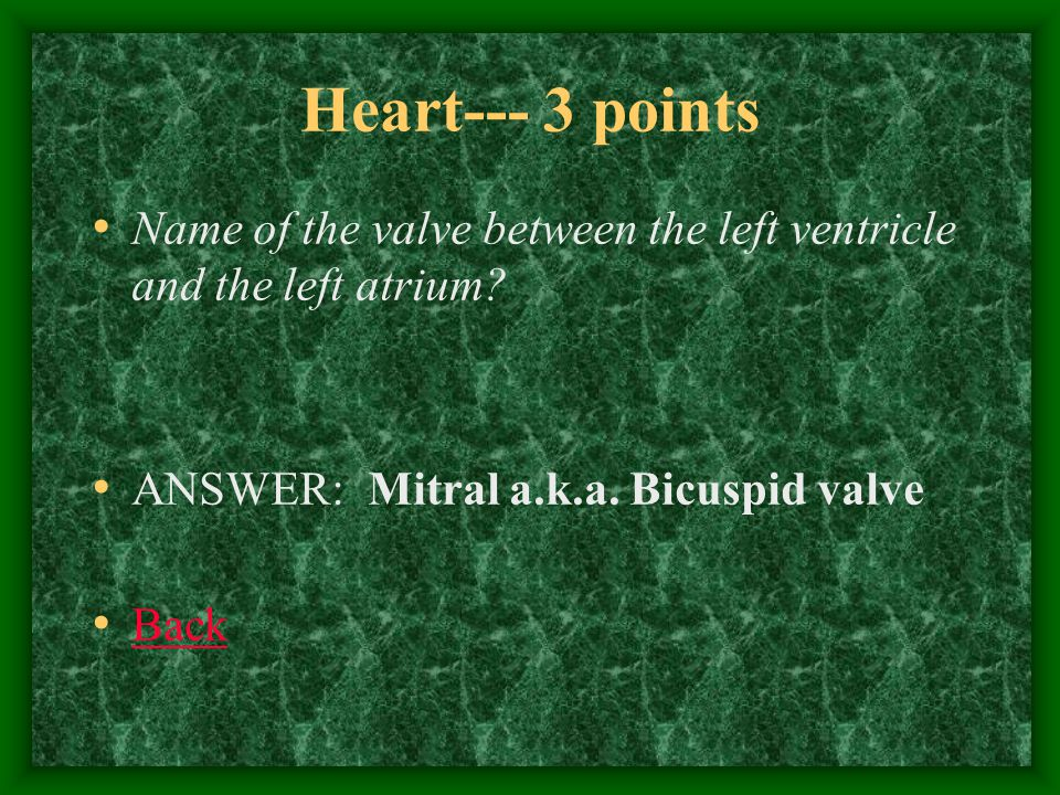Heart--- 4 points The major veins that enter the right atrium.
