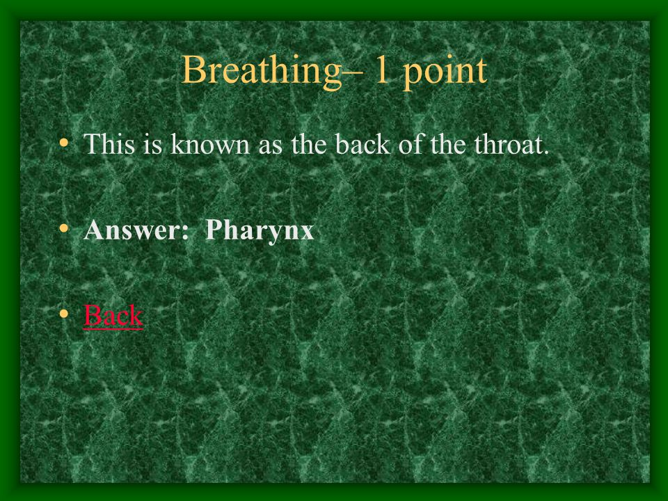 Breathing– 2 points These muscles contract during inhalation or inspiration.