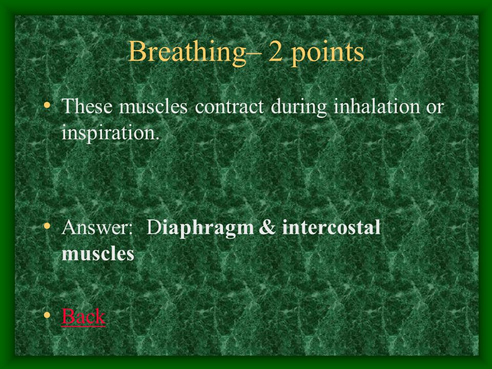 Breathing– 3 points Your breathing is controlled by the amount of Carbon Dioxide in your blood which is monitored by sensors in these two locations.
