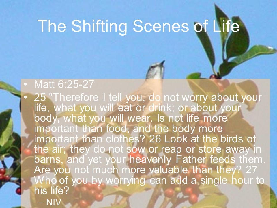 Matt 6:28-31 28 And why do you worry about clothes.