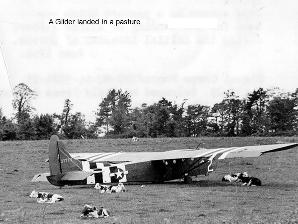 A Glider landed in a pasture