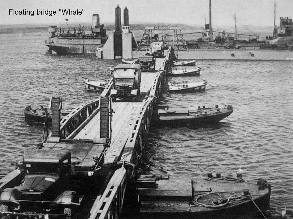 Floating bridge Whale