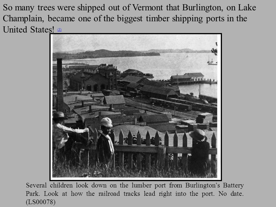 Logging had a huge impact on the landscape.