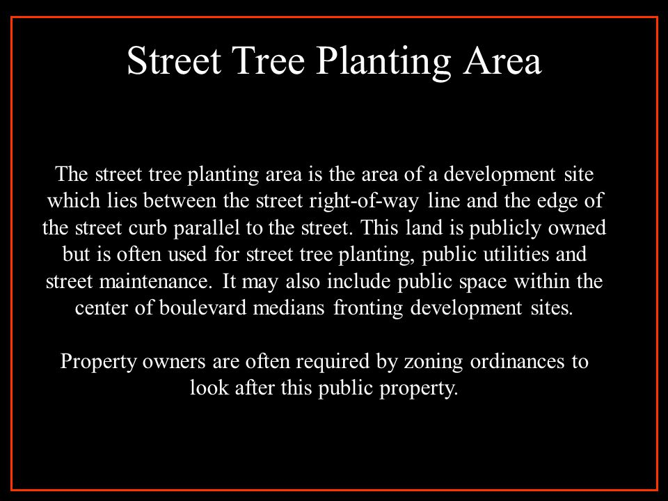 The Problem 1. Public street edges too small to plant with trees