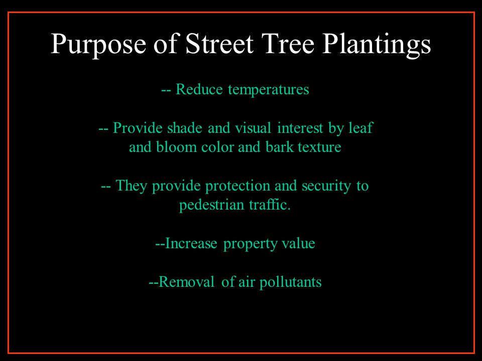 Types of Street Tree Planting Areas 1.Scale of Tree – Large, Medium, Small 2.