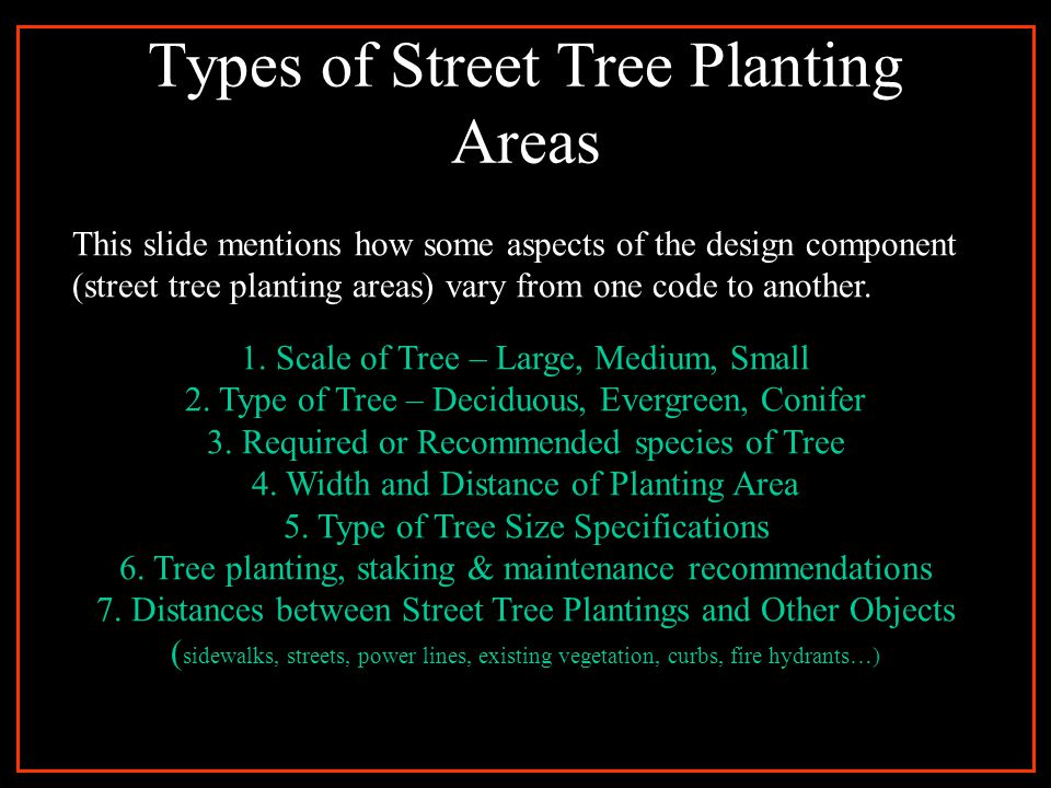 Code Writing Essentials Purpose Location With Respect to property lines Size Length of Planting Area Width of Planting Area Distance from the Curb, Underground Utility Lines, Power Poles, Driveways, Street Lights, Existing Trees, Street Intersections, Sidewalks, Fire Hydrants Distance between each Street Tree being planted Plant Specifications Type (Native, Conifer, Deciduous, Evergreen), Size (Height, Width), Spacing, Growth Rate, Trunk Type Design Composition Prohibited vs.