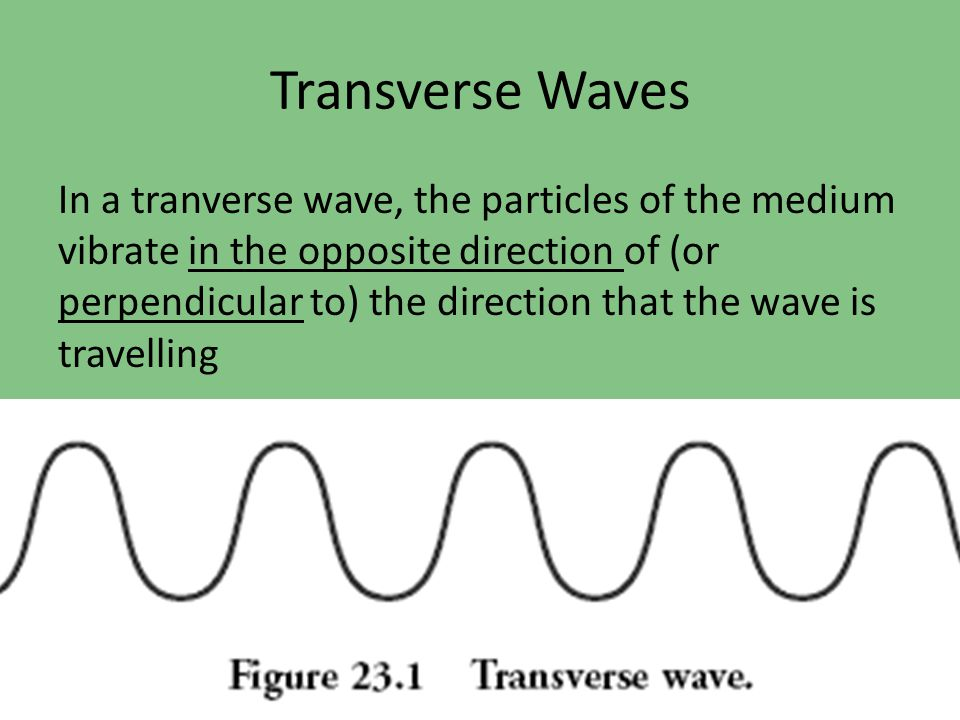 Transverse waves (where the particles move perpendicular to the direction of the wave) are also all around you in the form of LIGHT!