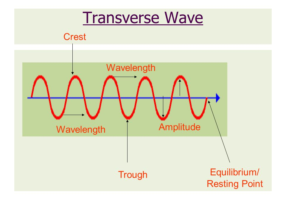 Review 1.In a ___________ wave the particles of the medium vibrate PERPENDICULAR to the direction the wave is travelling.