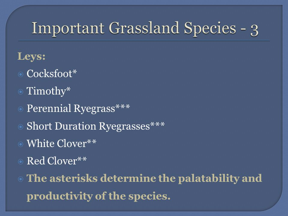  Grassland in Ireland is used solely for feeding livestock.
