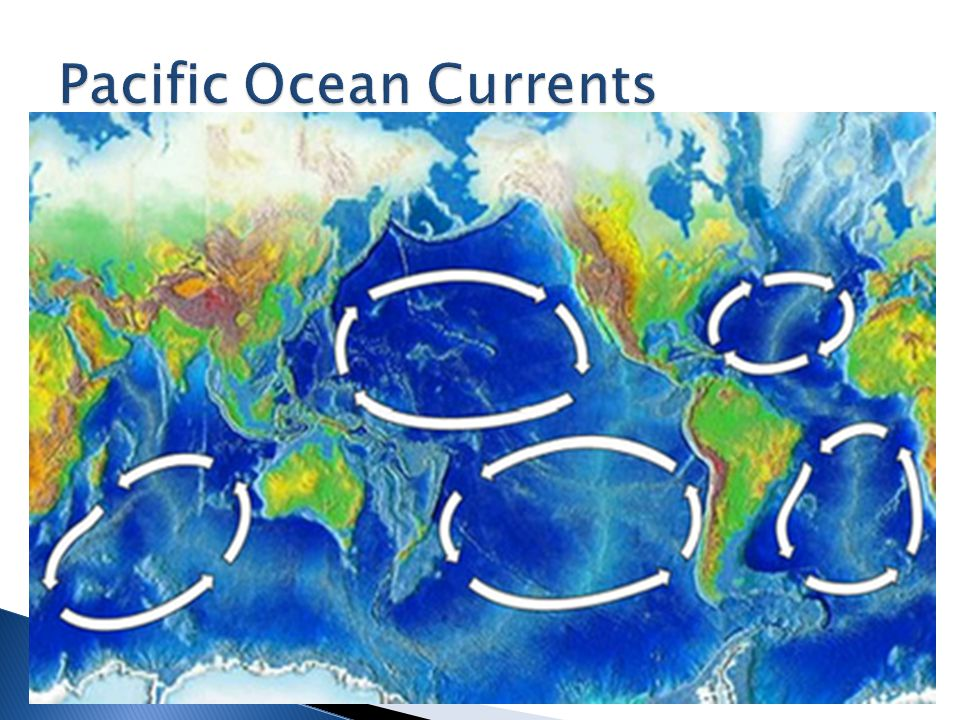 2 nd largest ocean: Atlantic Ocean ◦ about 1/2 the size of Pacific Ocean ◦ Covers 81,630,000 km 2.