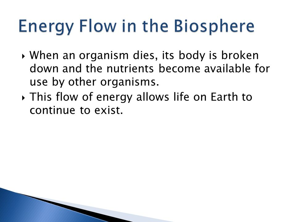  Closed systems are systems that cannot exchange matter or energy with its surroundings.