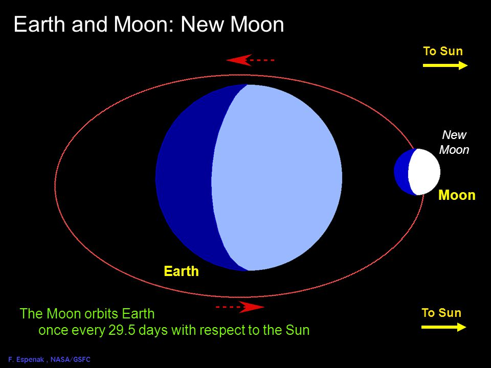 Solar Eclipse Geometry 3 To Sun Earth New Moon Earth and Moon: Solar Eclipse Geometry Penumbra Umbra Moon An eclipse of the Sun is only possible during the New Moon phase.