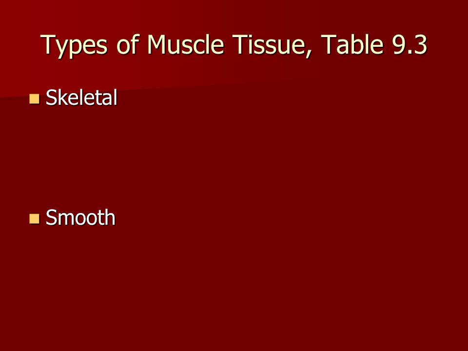 Types of Muscle Tissue Cardiac Cardiac