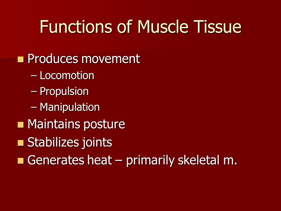 Structural Organization of Skeletal Muscle, Table 9.1 Organ = Organ = Fascicles = Fascicles = Cell = Cell = Myofibrils Myofibrils Myofilaments Myofilaments