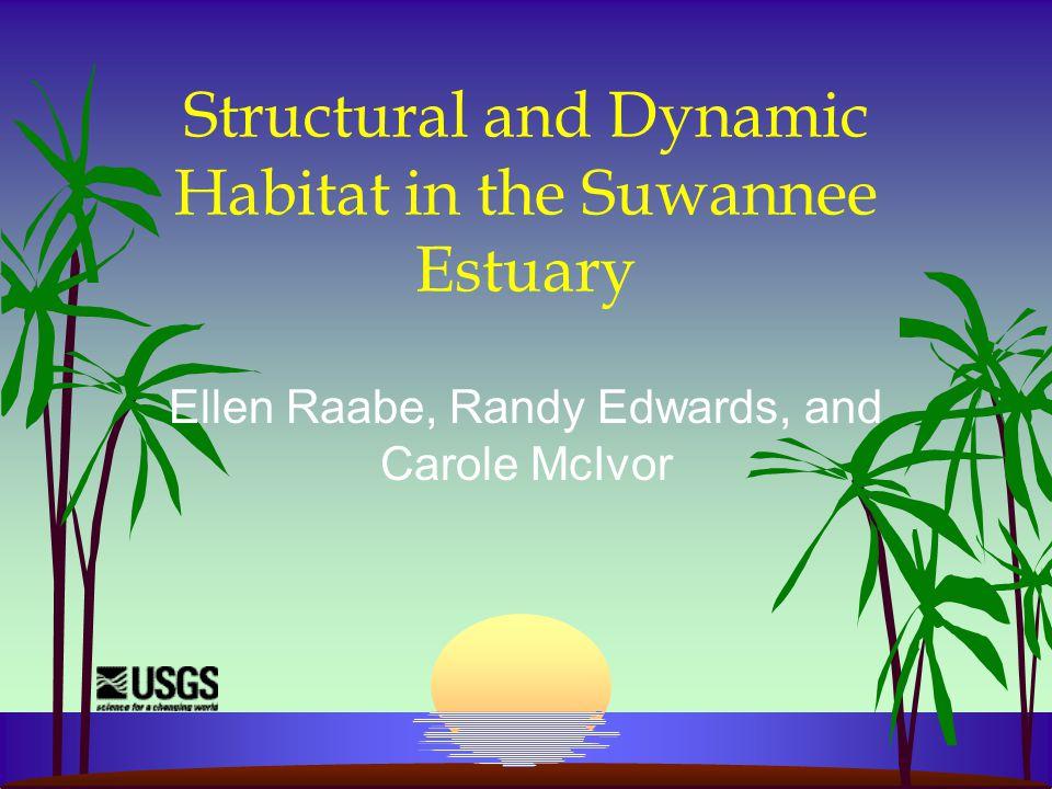 Structural and Dynamic Habitat in the Suwannee Estuary Ellen Raabe, Randy Edwards, and Carole McIvor