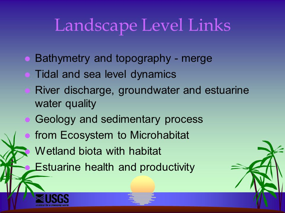 Landscape Level Links l Bathymetry and topography - merge l Tidal and sea level dynamics l River discharge, groundwater and estuarine water quality l Geology and sedimentary process l from Ecosystem to Microhabitat l Wetland biota with habitat l Estuarine health and productivity