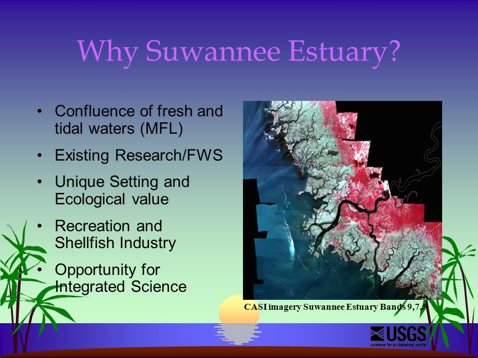 Why Suwannee Estuary.