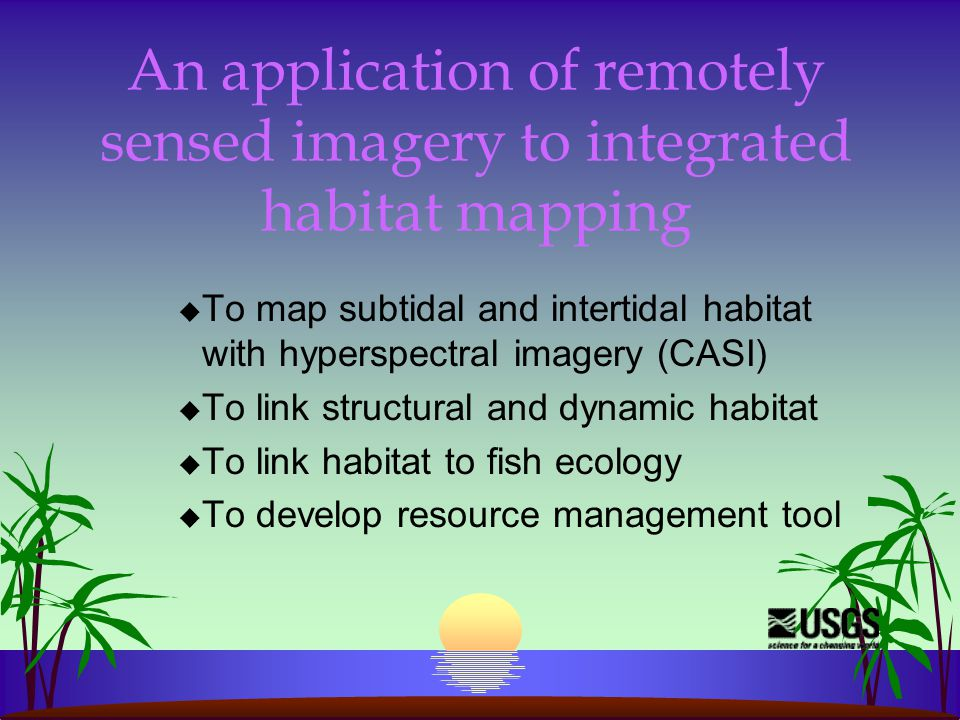 An application of remotely sensed imagery to integrated habitat mapping u To map subtidal and intertidal habitat with hyperspectral imagery (CASI) u To link structural and dynamic habitat u To link habitat to fish ecology u To develop resource management tool