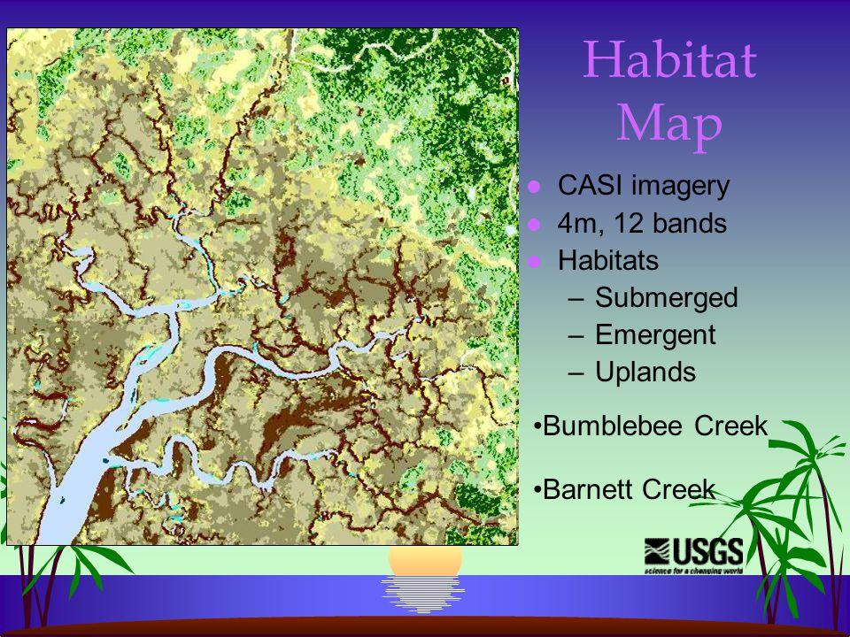 Habitat Map l CASI imagery l 4m, 12 bands l Habitats –Submerged –Emergent –Uplands Bumblebee Creek Barnett Creek
