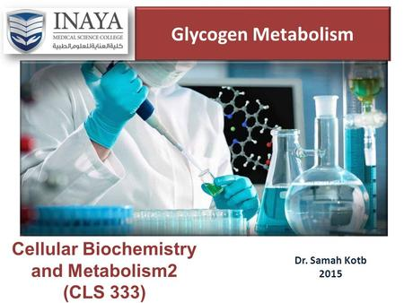 Glycogen Metabolism Dr. Samah Kotb 2015 Cellular Biochemistry and Metabolism2 (CLS 333)