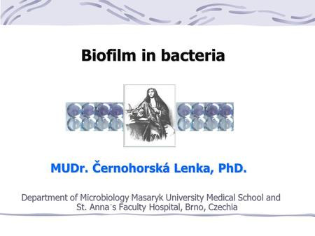 Biofilm in bacteria Biofilm in bacteria MUDr. Černohorská Lenka, PhD. Department of Microbiology Masaryk University Medical School and St. Anna´s Faculty.