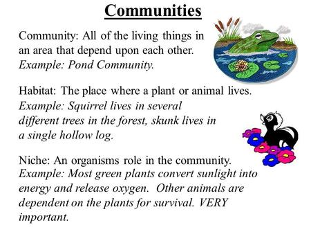 Communities Community: All of the living things in an area that depend upon each other. Example: Pond Community. Habitat: The place where a plant or animal.