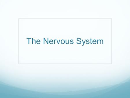 The Nervous System. This is awesome! O lny srmat poelpe can raed tihs. I cdnuolt blveiee taht I cluod aulaclty uesdnatnrd waht I was rdanieg. The phaonmneal.