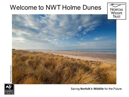 Saving Norfolk's Wildlife for the Future Welcome to NWT Holme Dunes Photo: Richard Osbourne Saving Norfolk's Wildlife for the Future.
