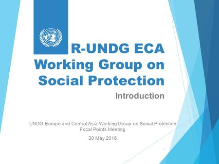 R-UNDG ECA Working Group on Social Protection UNDG Europe and Central Asia Working Group on Social Protection Focal Points Meeting 30 May 2016 1 Introduction.