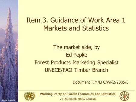 Working Party on Forest Economics and Statistics 22-24 March 2005, Geneva Photo: B. Michie Item 3. Guidance of Work Area 1 Markets and Statistics The market.