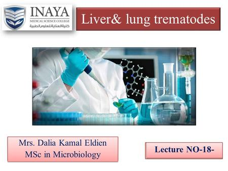 Liver& lung trematodes Mrs. Dalia Kamal Eldien MSc in Microbiology Mrs. Dalia Kamal Eldien MSc in Microbiology Lecture NO-18-