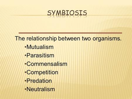 The relationship between two organisms. Mutualism Parasitism Commensalism Competition Predation Neutralism.