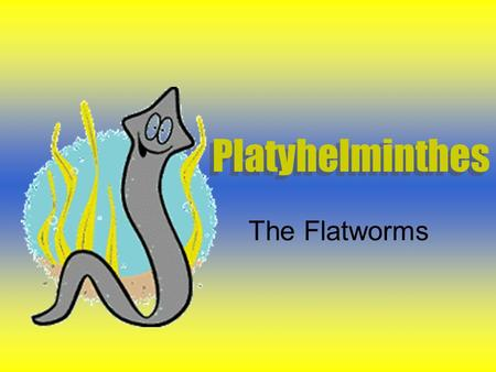 Platyhelminthes The Flatworms. Defining Characteristics Acoelomate Bilateral Symmetry Cephalization (has a head) Three layers of tissues (endoderm, ectoderm.