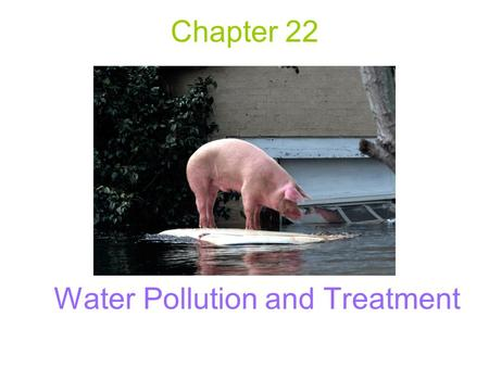 Chapter 22 Water Pollution and Treatment. Water Pollution Primary water pollution problem (world) - lack of clean, disease-free drinking water. Major.