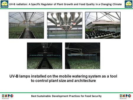 Best Sustainable Development Practices for Food Security UV-B radiation: A Specific Regulator of Plant Growth and Food Quality in a Changing Climate UV-B.