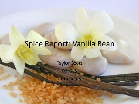 Spice Report: Vanilla Bean Taylor Scott Pd. 2,3 L1 Culinary.