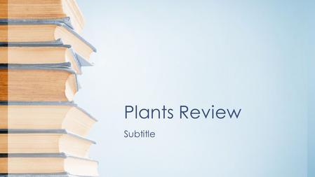 Plants Review Subtitle. Flower Anatomy Parts of the Flower Sepals –Covers flower bud. –Protects the stamens and pistils when flower is in bud stage.
