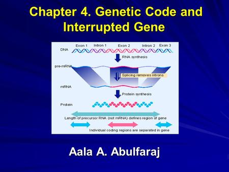 Genetic Code and Interrupted Gene Chapter 4. Genetic Code and Interrupted Gene Aala A. Abulfaraj.