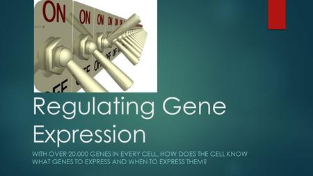 Regulating Gene Expression WITH OVER 20.000 GENES IN EVERY CELL, HOW DOES THE CELL KNOW WHAT GENES TO EXPRESS AND WHEN TO EXPRESS THEM?
