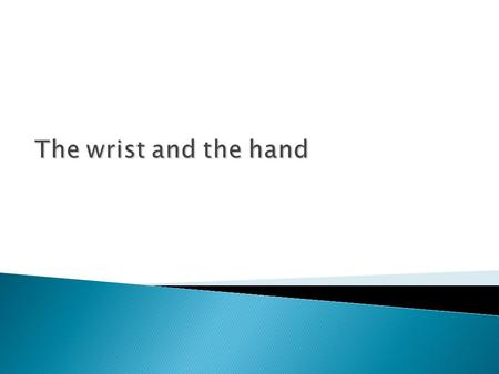 The wrist and the hand. Wrist anatomy Radius forms wrist joint with scaphoid, lunate & triquetrum.