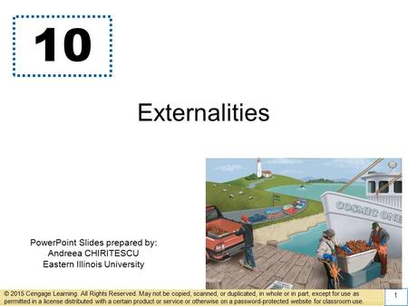 PowerPoint Slides prepared by: Andreea CHIRITESCU Eastern Illinois University 10 Externalities © 2015 Cengage Learning. All Rights Reserved. May not be.