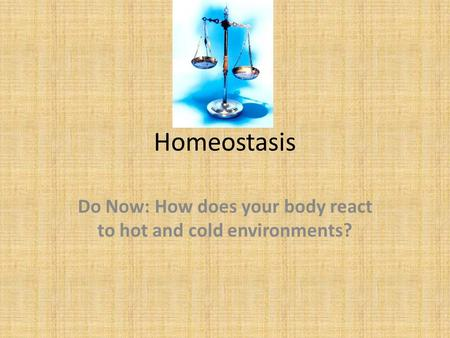 Homeostasis Do Now: How does your body react to hot and cold environments?