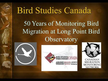 Bird Studies Canada 50 Years of Monitoring Bird Migration at Long Point Bird Observatory.