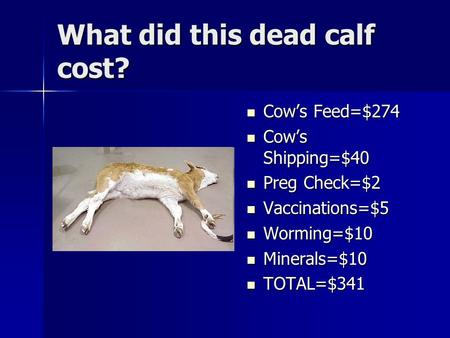 What did this dead calf cost? Cow's Feed=$274 Cow's Feed=$274 Cow's Shipping=$40 Cow's Shipping=$40 Preg Check=$2 Preg Check=$2 Vaccinations=$5 Vaccinations=$5.