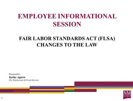 EMPLOYEE INFORMATIONAL SESSION FAIR LABOR STANDARDS ACT (FLSA) CHANGES TO THE LAW Presented by: Kathy Agnew Dir, Employment & Comp Services 1.