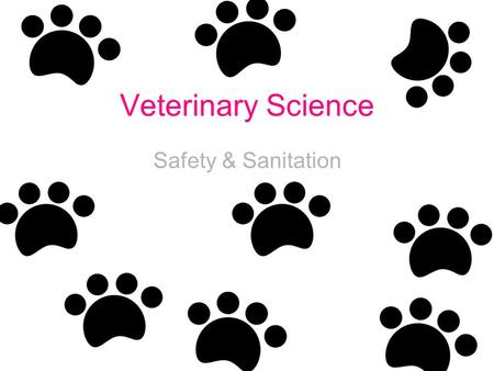 Veterinary Science Safety & Sanitation. Why is the knowledge of safety & sanitation important in veterinary medicine? Potentially hazardous situations.