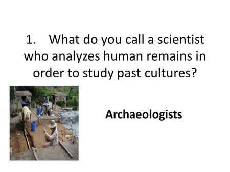 1.What do you call a scientist who analyzes human remains in order to study past cultures? Archaeologists.