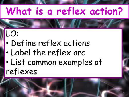 LO: Define reflex actions Label the reflex arc List common examples of reflexes What is a reflex action?