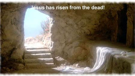 Jesus has risen from the dead!. Matthew 28:1-15 NIV After the Sabbath, at dawn on the first day of the week, Mary Magdalene and the other Mary went to.